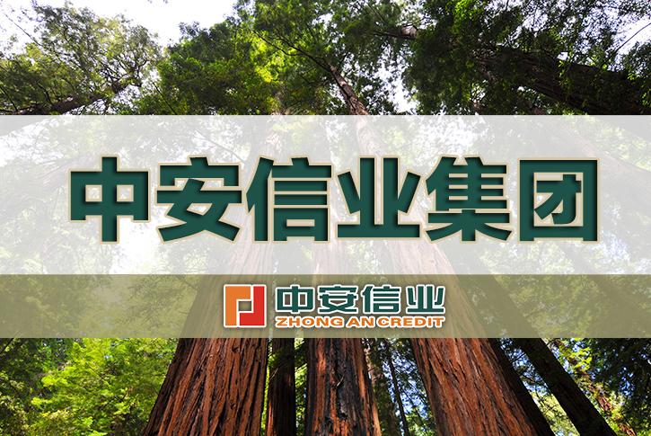 中安信业集团正式挂牌成立!